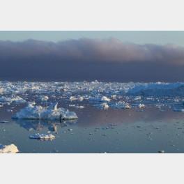 Glaces de l'Arctique