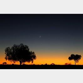 Rêverie australe